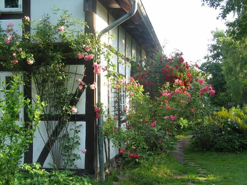 Haus mit Rosen